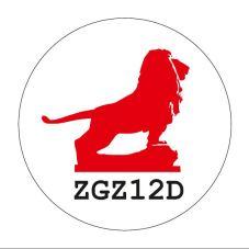 ZGZ12D-plano